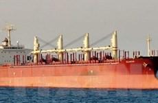 Cướp biển trả tự do 12 thủy thủ cùng tàu hàng của Thụy Sĩ