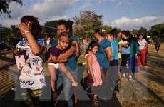 Tổng thống Mỹ sử dụng tối đa quyền hạn chặn người di cư bất hợp pháp