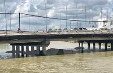 Cần Thơ: Sà lan chìm dưới chân cầu Cái Khê, 4 người may mắn thoát nạn