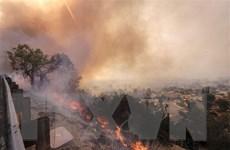 Nguy cơ lở đất do mưa lớn tại bang California sau thảm họa cháy rừng