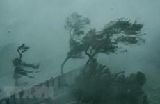 Tiền Giang: Các huyện ven biển Gò Công đang mưa rất to