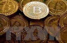 Đồng tiền ảo Bitcoin tiếp tục ''rơi tự do'' xuống ngưỡng 3.500 USD