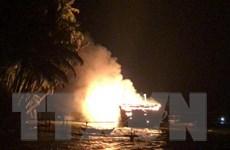Hỏa hoạn thiêu rụi tàu cá trị giá hơn 9 tỷ đồng đang neo đậu trong bến