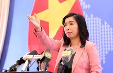 Việt Nam hoan nghênh việc Hàn Quốc áp dụng quy định visa mới