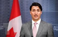 Canada tìm giải pháp thực hiện thỏa thuận bán vũ khí cho Saudi Arabia