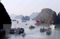 Đình chỉ hoạt động của tàu du lịch thiếu thẩm mỹ trên vịnh Hạ Long
