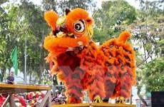 Rộn ràng Liên hoan lân-sư-rồng Thành phố Hồ Chí Minh lần thứ 2