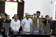Vụ trộn lõi pin vào phế phẩm càphê: Các bị cáo lĩnh án từ 7-8 năm tù