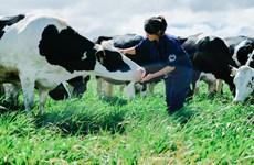 Việt Nam có Hệ thống trang trại đạt chuẩn Global G.A.P lớn nhất châu Á