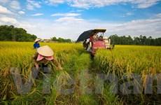 Dấu ấn của tăng trưởng ngành nông nghiệp trong năm 2018