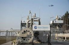 Đức: Mỹ không nên đơn phương trừng phạt dự án Dòng chảy phương Bắc 2