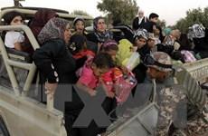 UNHCR: Hàng nghìn người dân Syria có nguy cơ phải đi lánh nạn