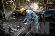 Lực lượng lao động tại Nhật Bản dự kiến giảm 20% vào năm 2040