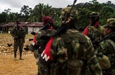 Interpol phát lệnh truy nã trưởng đoàn đàm phán nhóm ELN của Colombia