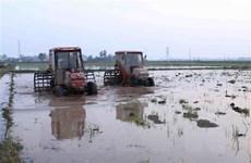 Kết thúc lấy nước đợt 1, gần 55% diện tích đủ nước cho vụ Đông Xuân
