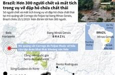 Brazil: Hơn 300 người chết và mất tích vụ vỡ đập hồ chứa chất thải
