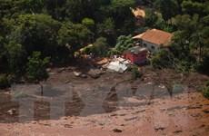 Vụ vỡ đập tại Brazil: Bùn thải gây ô nhiễm nguồn nước sạch