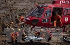 Vỡ đập tại Brazil: Vale SA bị tước giấy phép vận hành đập Lanjeiras