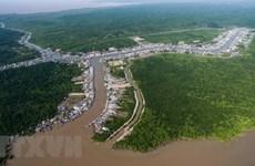 Khai trương tuyến du lịch xuyên rừng Vườn Quốc gia Mũi Cà Mau