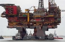 Giá dầu Brent ghi nhận mức cao nhất trong năm nay