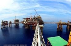 Liên doanh Vietsovpetro đón dòng dầu đầu tiên từ mỏ Cá Tầm