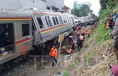 Tàu hỏa trật đường ray tại Indonesia, hàng chục người bị thương