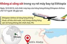 [Infographics] Không ai sống sót trong vụ rơi máy bay tại Ethiopia