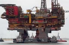 Chưa chấm dứt cắt giảm nguồn cung, giá dầu thế giới tăng hơn 1%