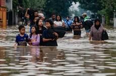 Hơn 40 người thiệt mạng do lũ quét tại miền Đông Indonesia