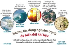 [Infographics] Những tác động nghiêm trọng do biến đổi khí hậu