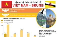 [Infographics] Quan hệ hợp tác kinh tế Việt Nam-Brunei