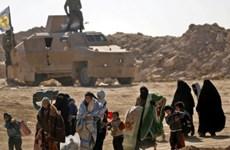 IS tuyên bố tấn công lực lượng được Mỹ hậu thuẫn tại Syria