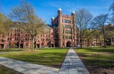 Bộ Giáo dục Mỹ điều tra 8 trường đại học liên quan bê bối thi cử