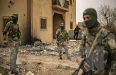 50 tay súng thuộc tổ chức IS bị tiêu diệt ở miền Đông Syria