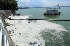 Hồi sinh nước hồ Tây - việc làm cấp thiết để cứu lá ''phổi xanh''