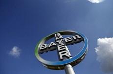 Công ty hóa chất Bayer của Đức bị tấn công mạng