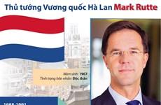 Sự nghiệp của Thủ tướng Vương quốc Hà Lan Mark Rutte