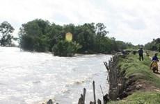 Hợp tác Việt Nam-Hà Lan về quản trị tài nguyên nước tại ĐBSCL