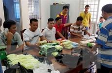 Bắt giữ vụ vận chuyển 26,6kg ma túy từ Campuchia về Việt Nam