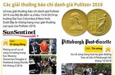 [Infographics] Các giải thưởng báo chí danh giá Pulitzer 2019
