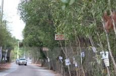 Các ''điểm nóng'' bất động sản đều được kiểm soát chặt chẽ