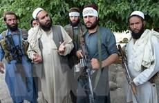 Taliban đổ lỗi cho chính phủ Afghanistan về đổ vỡ hội đàm tại Qatar