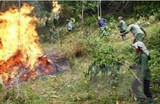Nắng nóng tiếp tục mở rộng, nguy cơ cao về cháy nổ và cháy rừng