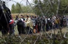 Người Anh đánh giá tích cực nhất châu Âu về lợi ích từ nhập cư