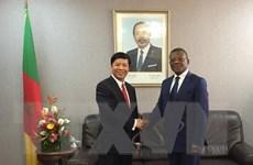 Đặc phái viên Thủ tướng thăm và làm việc tại Cộng hòa Cameroon