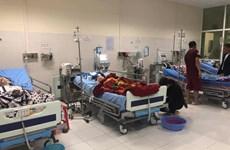 Bắc Kạn: Bốn người phải nhập viện do ăn nhầm lá ngón