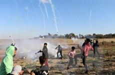 Đụng độ giữa người biểu tình Palestine ở Dải Gaza và binh sỹ Israel