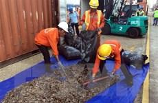 Phát hiện vụ vận chuyển trái phép hơn 5 tấn vảy sừng tê tê
