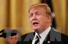 Nhật Bản, Mỹ hướng tới chuyến thăm của Tổng thống Donald Trump