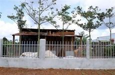 Đắk Nông: Nhà xây bất thường trên đất sắp thu hồi khai thác alumin